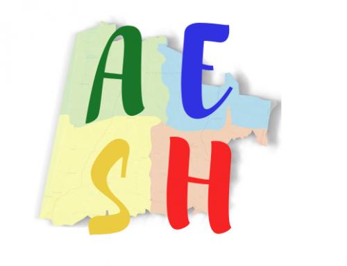 Un stage AESH réussi