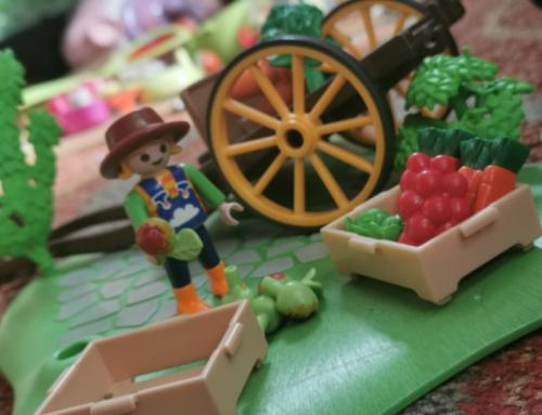 Continuité pédagogique et champ de fraises